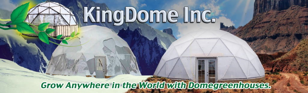 KingDome Inc.
