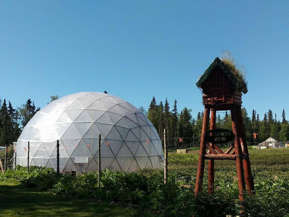 50 Foot Dome